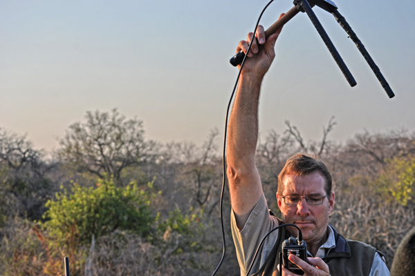 Jason Turner, the lion ecologist at the trust, uses radio telemetry to determine a lion's proximity. When Turner and Tucker introduced the white lions into the wild 14 years ago, scientists were skeptical that they would adapt to hunt and be able to camouflage in the bushveld. Turner says the lions integrated quickly into the environment and are thriving.